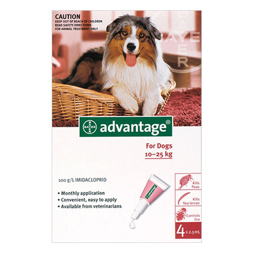 Image of Advantage Large Dogs 21-55lbs Red 16 Months