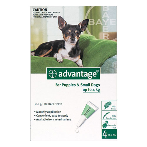 Advantage Small Dogs/ Pups 1-10lbs (Green) 12 + 4 FREE