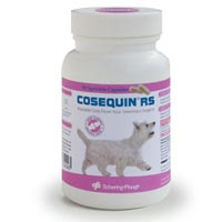 Cosequin RS For Dogs Cats 90 CAPSULE