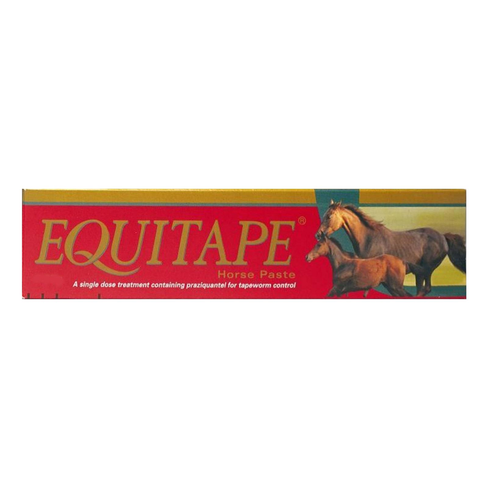 Equitape Horse Wormer Paste 6.67 gm 1 SYRINGE