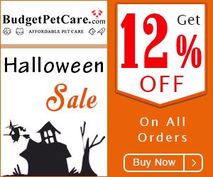 Scarily Good Prices This Halloween! Use Coupon: HALLOWEEN to avail 12% Extra Discount & Free Shipping on Everything