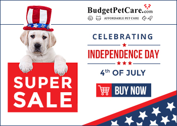 Save Big with these 4th of July Deals! Get 12% Extra Discount + Free Shipping on Everything! Use Code: BPCJULY12