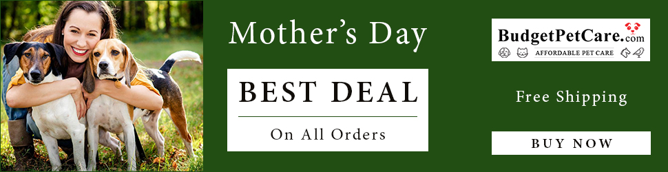 Everything a Pet Mom Wants on this Mother�s Day at BudgetPetCare.com! Grab 12% Extra OFF + Free Shipping with Coupon: FURMOM