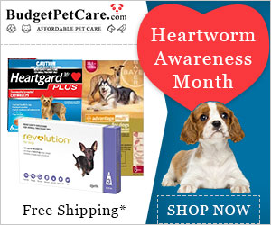 Your Pet deserves a heartworm treat, too. Get Cheap Revolution Dogs & 12% Discount + Extra 10% Instant Cashback on Every orders & Free Shipping. Use Coupon: HWAM12