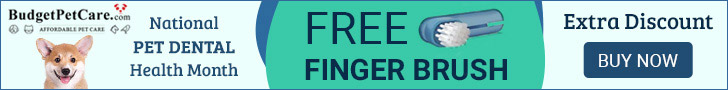 Big Deals Are Here — Get Free Finger Brush on National Pet Dental Health Month, Get 12% Off on all orders. ✯Free Shipping ✯10% Cashback  ✯ Use Coupon Code: NPDH12