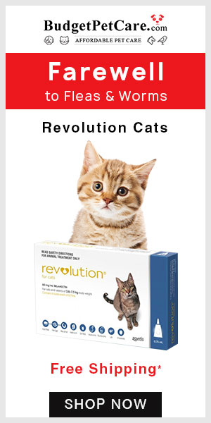 Revolution for Cats Deals Are Here --Get 12% Off Discount on all orders. ✯Free Shipping ✯Cashback  ✯ Use Coupon Code: BIGDEAL