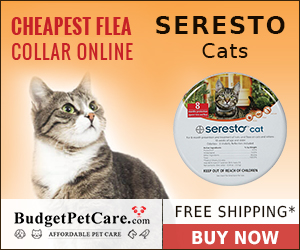 Get Special Discount on Seresto Cat Collar from BudgetPetCare! Get 10% Cashback  & Free Shipping on All Orders. Use Coupon: BIGDEAL