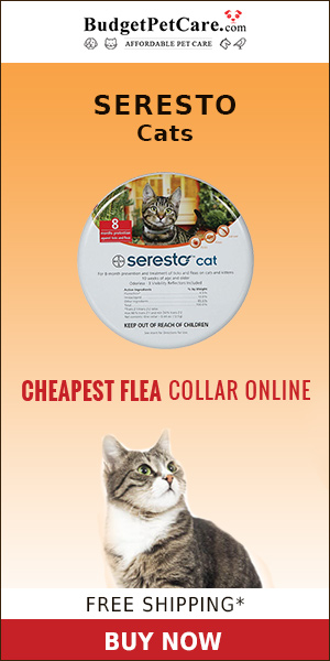Cheapest Seresto Collar for Cats & 12% Extra OFF ?Free Shipping ?10% Cashback ?Use Coupon Code: BIGDEAL