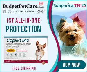 New Arrivals Just Landed - Simparica Trio protection against heartworm disease, ticks* & fleas! Extra 12% off, Use code: SUMER12