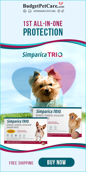 12% Off All New Arrivals Ends Tonight! Get all in one monthly chewable Simparica Trio at cheap price, Use code: SUMER12