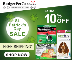 St. Patrick�s Day SAVINGS! ?? Extra 12% Off + Free Shipping. Use Coupon Code: LUCKY12