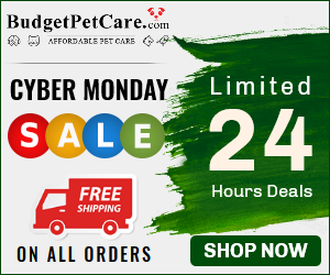 Get In Tune with Cyber Monday Deals: Huge Savings On Combo Offers & Free Doses + 15% Off + Free Shipping.  Use Code: BKFCBM15