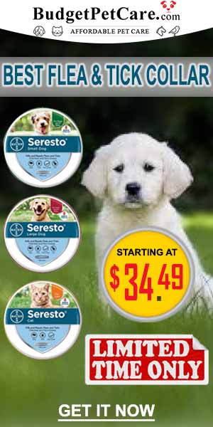Don�t Miss These Seresto Flea and Tick Collar Sale : Extra 12% OFF + Instant 10% Cashback. Use Coupon : SUMER12