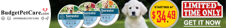 Up to 60% OFF Seresto Collar for Dogs + Instant 10% Cashback & Free Shipping. Use Coupon: SUMER12
